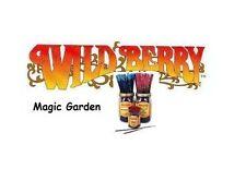 Wild Berry 'Magic Garden' Incense Sticks (pk10) (Q35)