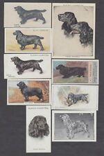 9 Different Vintage Field Spaniel Tobacco/Cigarette/Tea Dog Cards Lot
