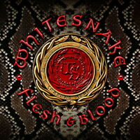 WHITESNAKE-FLESH & BLOOD-JAPAN CD+DVD BONUS TRACK Ltd/Ed J50
