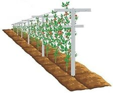 New listing Mr.Garden Raspberry Trellis with Adjustable Arms,Plant Stake,Vineyard Trellis