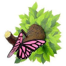 Luci rosa per bambini, tema farfalle