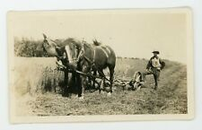 Nicely composed occupational /  farming agricultural photo   Vintage photo