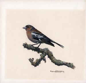 RICHARD C. TAMBLING Gouache Painting BIRD STUDY - 20TH CENTURY