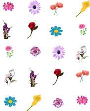 Mixed Flowers,( rosebud, daisy, lily, carnation) Waterslide Nail Decals/Nail art