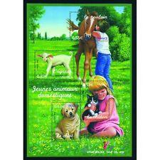 Bloc Feuillet BF96 - Jeunes animaux domestiques - 2006