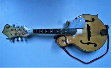 Bluegrass-Mandoline Folk Country USA neuwertig