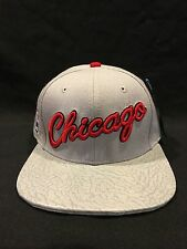 New Pro Standard Men's NBA Basketball Chicago Bulls Script Strapback Hat - Gray