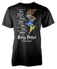 Harry Potter Generation Goblet Chamber Stone Adult T Shirt