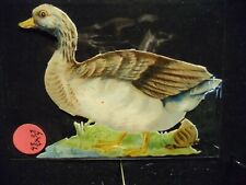 Victorian scrap # 5603  - GOOSE AND SNAIL LARGE