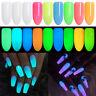 10g Luminous Nail Glitter Powder Pigment Dust Glow in the Dark Nail Art Pigment