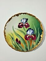 T&V LIMOGES HAND PAINTED CAKE PLATE LARGE IRISES and GOLD RIM