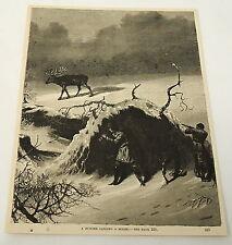 1884 magazine engraving ~ A HUNTER CALLING A MOOSE