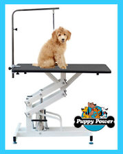 Single Arm Professional Z-Lift Hydraulic Dog Grooming Table Salon Vet Equipment