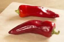 25+ Rare Spanish Heirloom Piquillo de Lodosa Pepper Seeds-O 171