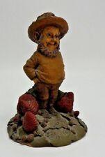SHORTY Resin 1984 Tom Clark Strawberry Gnome-Cairn Studio #1046~Story
