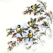4x Tovaglioli di carta per Decoupage Decopatch Craft LEO'S BIRDS