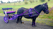 Purple Harness Horse/Pony/Mini colored Harness