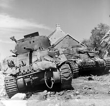WW2 Photo WWII Sherman and Panzer Destroyed  Falaise Pocket World War Two / 2414