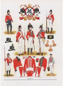 Vintage British Uniform Print c1805 Royal Marines