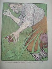 SWIFT-VIAGGI DI GULLIVER ILLUSTRATI DA 28 ARTISTICI DISEGNI DI YAMBO-SCOTTI 1905