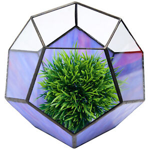 "Geometric Purple Glass Terrarium: Small Vase Planter (5.5"" x 7"")"