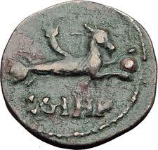 ELAGABALUS 218AD Genuine Parion Parium Mysia Ancient Roman Coin CAPRICORN i64812