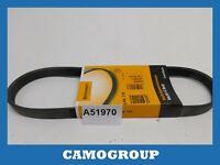 Belt Service V-Ribbed Belt 715MM Continental For FORD Escort Peugeot 605