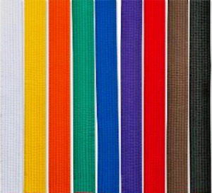 "New Martial Arts 1-1/2"" Wide Double Wrap Karate Taekwondo Color Belts FREE SHIP"