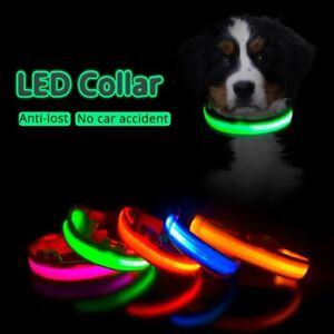 USB Charging LED Dog Collar  Anti-Lost / Avoid Car Accident Leads  free shipping