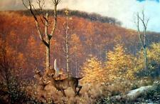 White Tail Deer, Claudio D'Angelo, Canadian Original L/E Signed, COA