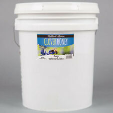 Monarch's Clover Honey 60 lb Pure Bulk Honey Baking Cooking 5 Gallon Pail USA