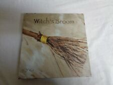 """Darren Gygi Home Collection Picture  """"Witch's  Broom Canvas Wall Art Picture"""
