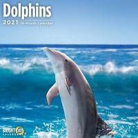 2021 Dolphins 12 x 12 Wall Calendar Ocean Under The Sea Animals