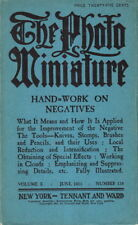 THE PHOTO MINIATURE ~ HAND WORK ON NEGATIVES -1911