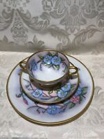 LIMOGES ~HAVILAND CUP/SAUCER,AND PLATE,HAND PAINTED,GOLD TRIM, TRIO