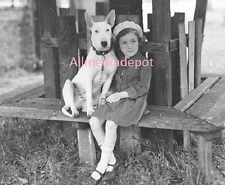 Bull terrier dog with a little girl. 8 x 10 Vintage Photo Reprint Ships Free.