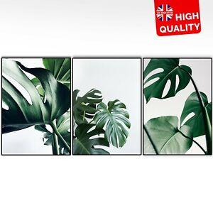 Nordic Plant Watercolor Minimalist Wall Art Home Decor Scenery Art Nature Poster