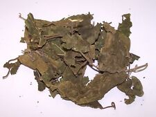 Dried Mulberry Leaf Litter - A Natural Food For All Freshwater Shrimps