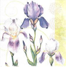 2 Serviettes en papier Iris fleur Decoupage Paper Napkins Flower