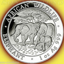 2013 SOMALIA African Wildlife ELEPHANT 1 Troy Oz .999 Silver - NOT PERFECT COIN