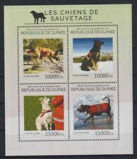 E405. Guinea - MNH - 2014 - Nature - Animals - Dogs