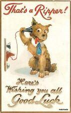 Artist impression C-1910 Dog Telephone Humor Good Luck 4310