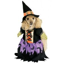Bewitched Dog Pet Costume Witch Halloween Fancy Dress Outfit