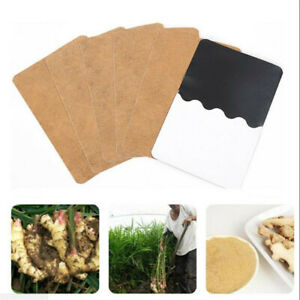 30x Natural Ginger Herbal Extract Detox Foot Patch Pad Patches Remove Body Toxin