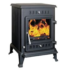 Joule 6 kW Multi Fuel Wood Burning Stove Fire