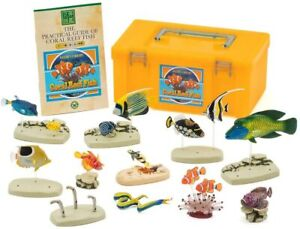 Colorata Nature's Library Coral Reef Fish PVC Figure Set New Japan F/S w/T