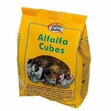 Pet Rabbit Guinea Pig Hamster & Small Rodents Alfalfa Hay Food Treat - 500 Gr