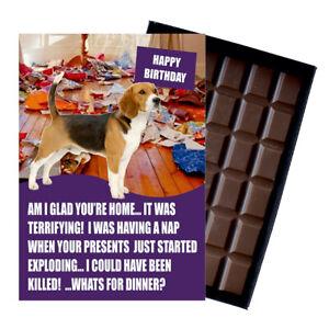 Beagle Birthday Card Funny Dog Gift Novelty 100g Boxed Chocolate Bar Greeting