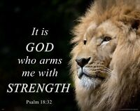Wildlife Lion Inspirational Poster Art Print Wall Decor Strength Psalm 18:32