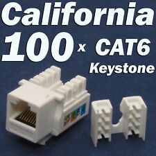 100 Pcs lot Keystone Jack CAT6 White Network Ethernet 110 Punch Down 8P8C RJ45